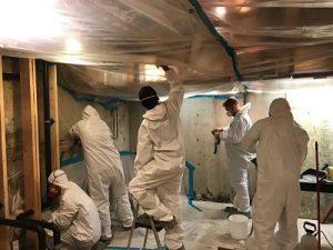 911Restoration-mold removal-san jose